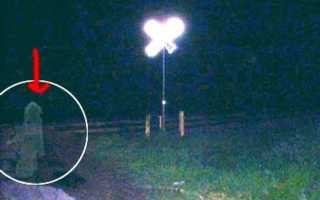 Наиболее известные снимки привидений (43 фото). Приведение Кейт Морган