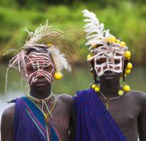 Виды этносов род племя нация и. Гражданские и этнокультурные нации