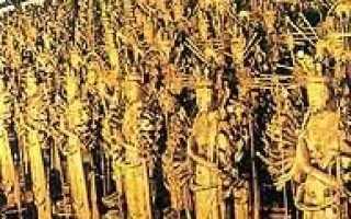 Юкио мисимы есть крутой роман золотой храм. О книге «Золотой храм» Юкио Мисима