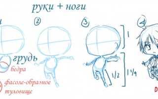 Как рисовать лицо чиби. Как нарисовать чиби? Чиби — любимый персонаж