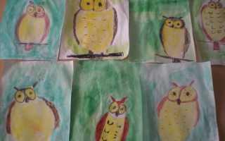 Рисуем сову поэтапно карандашом с детьми. Рисуем милую сову для детей