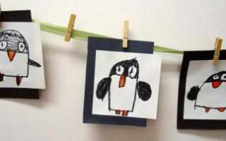 Как рисуется пингвин. Как нарисовать пингвина: интересные факты, этапы