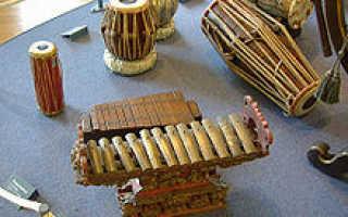 Какие есть ударные музыкальные инструменты. Ударные инструменты: названия и виды