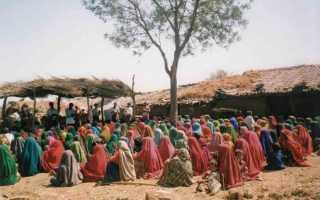 Социальная структура древней индии. Те, кто появился из плевка бога Брахмы