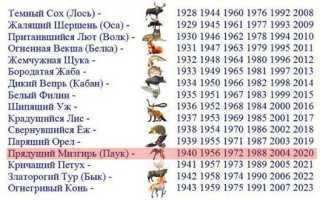 Славянский гороскоп животных на год. Про славянское летоисчисление и не только