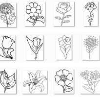 Цветок для раскрашивания для самых маленьких.  Цветы из контурных линий