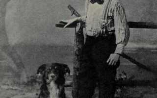 Джек лонд. Джек лондон — биография, фото, книги, личная жизнь писателя