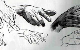 Рисование кисти руки девушки. Как рисовать кисть руки? Анатомия для художника
