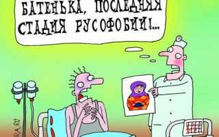 Основные русофобские мифы запада. Миф о том, что умом Россию не понять
