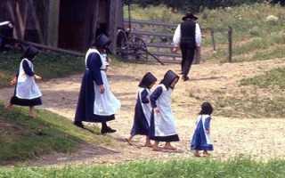 Амиши кто такие. Кто такие амиши и откуда он появились? Запрет на цивилизацию