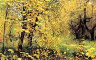 Картины осенней природы русских художников. Очаровательная русская осень