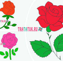 Пошаговое рисование розы карандашом для начинающих. Учимся рисовать розы