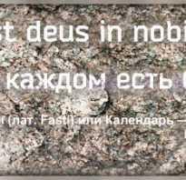 Красивые фразы на латыни с переводом о жизни. Крылатые выражения и пословицы