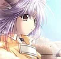 Кто такой шаман кинг. Отличие английской и японской версии аниме
