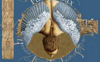 Ричард бах чайка иллюзии в одном издании. «Чайка Джонатан Ливингстон