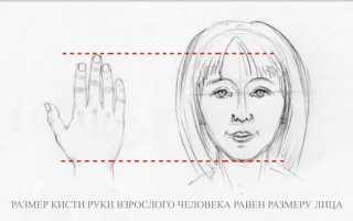 Детские рисунки рук в кулак. Как рисовать руки? Анатомия для художника