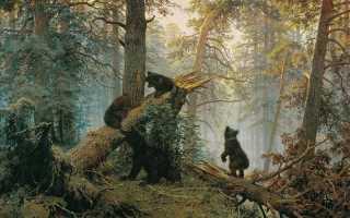 Описание картины шишкина мишки с сосновом лесу. Утро в сосновом бору