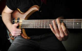 Лучшая бас гитара. Как выбрать бас-гитару? Полный гайд для начинающего бас-гитариста