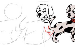 Как рисовать рисунки мультипликационных героев. Заведем себе далматинца