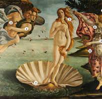 Рождение венеры картина. «Рождение Венеры» — любовь и боль Боттичелли