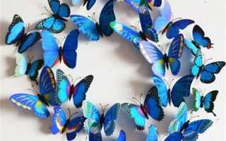 Бабочки рисунки красивые яркие для детей. Трафареты бабочек для декора
