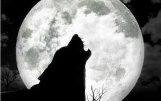 Ритуалы и обряды в полнолуние. Заговор в полнолуние — на утреннюю и вечернюю зорьку