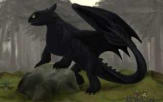 Фурия – это… Дракон Ночная Фурия – правда или вымысел? Кто такие фурии.