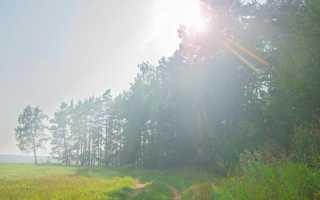 Образы-символы в «Слове о полку Игореве». Образ Русской земли в произведении