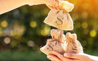 Типовой договор пожертвования бюджетному учреждению. Договор пожертвования