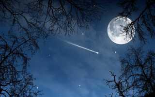 Почему звезды падают? Когда происходят звездопады? Почему падают звезды.