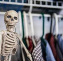 Откуда выражение скелет в шкафу. Скелет в шкафу – история из жизни