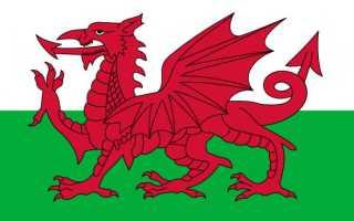 Национальные символы уэльса. Валлийский красный дракон или и-драйг гох