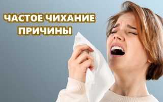 Что вызывает аллергию чихание. Причины аллергической реакции на людей