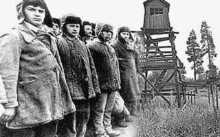 Всё, что вы хотели знать о «сталинских репрессиях», но боялись спросить. ЕГЭ