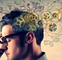 Генетическая память человека. Идо познавательные процессы пособие