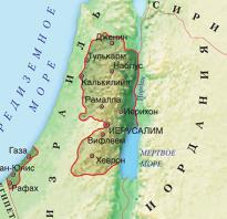 Что такое действие в литературе определение. Место действия – Палестина