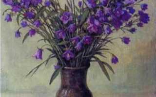 Сочинение по картине Щербакова Колокольчики мои (описание). Колокольчики мои