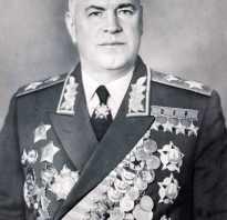 Немецкие полководцы вов. Реферат: Полководцы Великой Отечественной Войны
