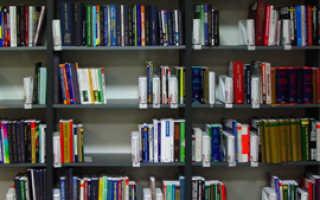 Чем отличается литературоведение от литературы. Поэтическая лексика