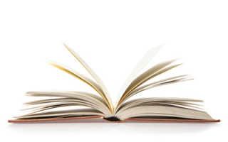Курсовая работа: Стилистический анализ произведения Достоевского «Дневник писателя».
