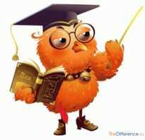 Что означает лауреат и дипломант. Разница между призером и лауреатом