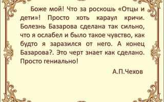 Евгений базаров биография. Образование и воспитание Базарова в романе «Отцы и дети»