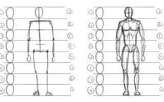 Человечек карандашом. Пошаговая инструкция, как нарисовать человека