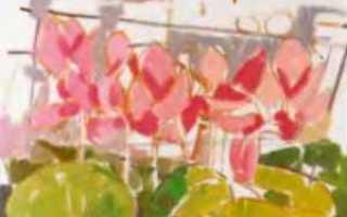 Не сложные цветы маслом. Как масляными красками рисовать цветы мака