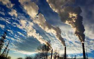 Глобальные экологические проблемы. Реферат: Проблемы загрязнения окружающей среды