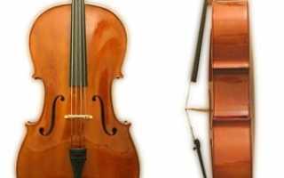 История виолончели. Виолончель — Всё о создании электронной музыки