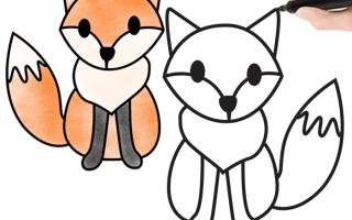 Легкие рисунки лисы. Как нарисовать лису цветными карандашами поэтапно