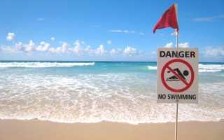 Что означает зеленый флаг на пляже. Цветной совет туристам: пляжные флаги