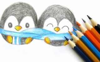 Как рисуется пингвин. Как поэтапно нарисовать пингвина: уроки для детей и взрослых
